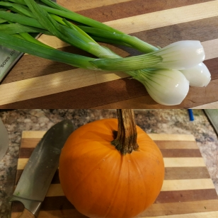 Baby Onions and Pumpkin